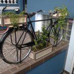 Cafe-Rueda-Bike